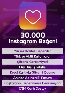 30000 instagram beğeni